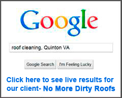 Google search for roof cleaning in Quinton, VA